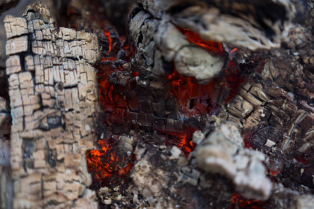 stoking: Burning fire wood in the fire