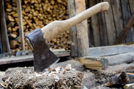 Old axe stuck in log and wooden tree logs ready for chopping in front of a staple of firewood.
