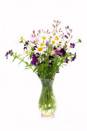 흰색 배경에 camomile 및 야생 꽃 꽃다발