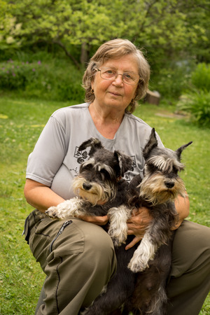 seventy two: Senior happy woman in glasses and two black and silver miniature schnauzer dogs in a garden