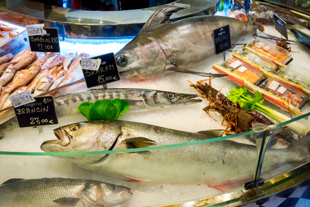 city fish market sign: KOTOR, MONTENEGRO - SEPTEMBER 02, 2015: COGImar fish shop. Fresh Fish on ice for sale at market close up.