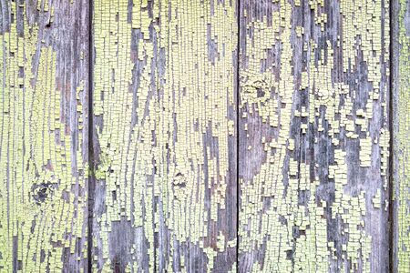 tacky: green tacky wooden texture background