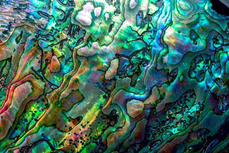 エゾアワビ シェル詳細 - 青アワビ真珠シェルの豪華な背景。 写真素材