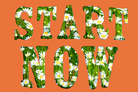 uneven: Start now inspiration quote. Uneven font with chamomile meadow.