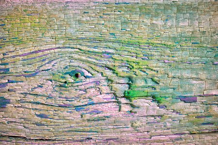 painted wood: Old painted knotted wood background