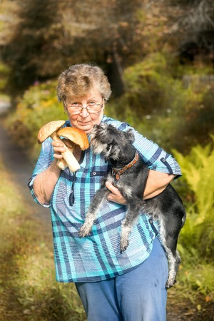 seeker: Proud mushroom seeker elderly woman with schnauzer dog on her hands Stock Photo