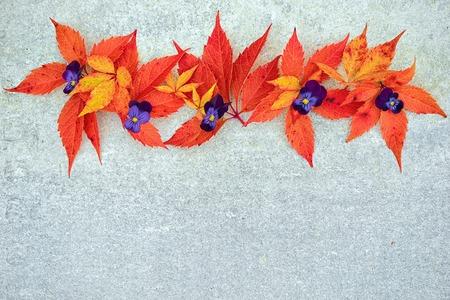 caida libre: Colorido del otoño las hojas de parra y pensamientos de la naturaleza sobre un fondo gris neutro con espacio de copia para su inscripción