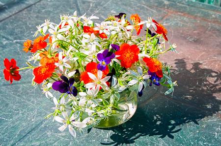 ornithogalum: Ornithogalum and pansies bouquet Stock Photo