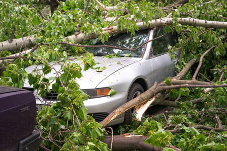 Moscow, Russia - May 30, 2017: car parked at the street and fully littered with trees after a hurricain