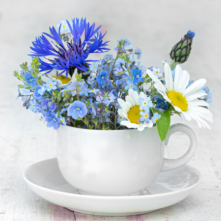 space for text: white coffee cup and saucer with bunch of wild flowers: forget me not, corn flower and chamomile, square composition. copy space for your text on the cup.