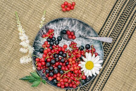 red and black currants in a forged metal plate on a mat with flowers, top view