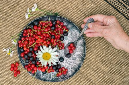 red and black currants in a forged metal plate on a mat with chamomile flower, and womans hand holding the spoon, top view