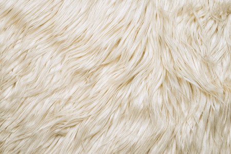 White wool fur. Detail of white sheep fur as a background.