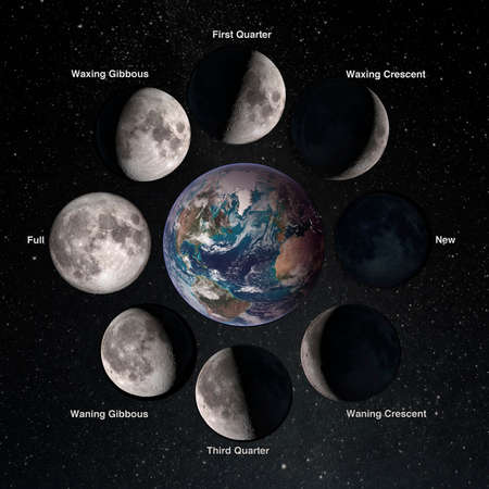 Relation movements of the moon 8 lunar phases revolution around Earth. Waxing crescent first quarter waxing gibbous full moon waning gibbous third guarter. Elements of this