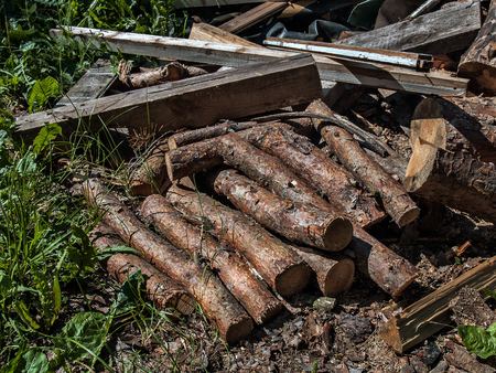 Pine logs and boards of firewood for firing ovens and fireplaces lie on the grass in summer on a sunny day
