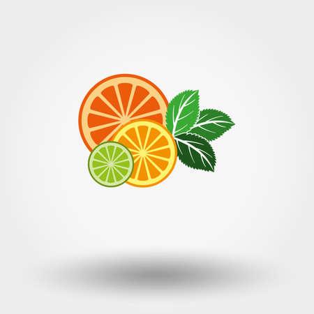 menta: Ilustraci�n vectorial de frutas y menta. Estilo de dise�o plano. Vectores
