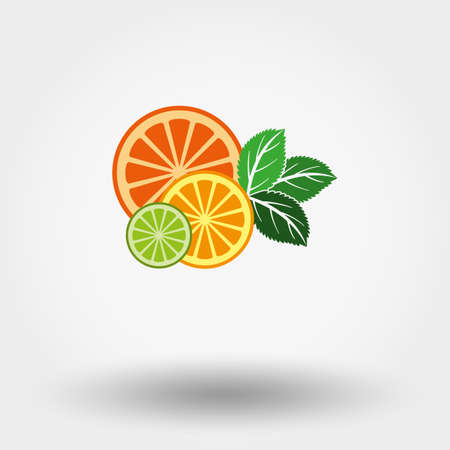 mint leaves: Vector illustration Fruit and mint. Flat design style. Illustration