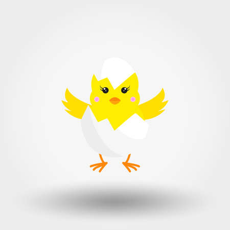 Chick in Eggshell. Icon for web and mobile application. Vector illustration on a white background. Flat design style.