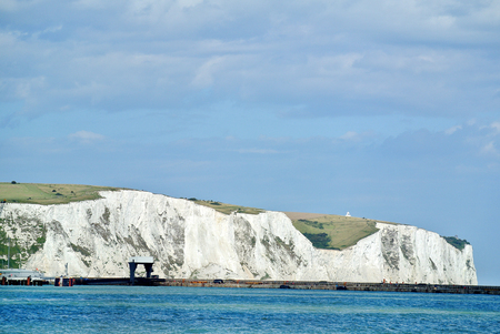 locality: Dover White Cliffs