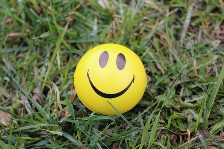 smiley smile symbol of happiness in the green grass