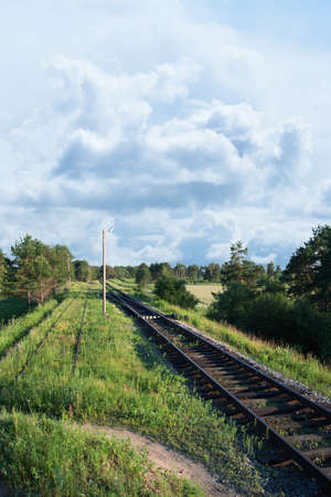 forest railway: Beautiful landscape of railway in summer forest