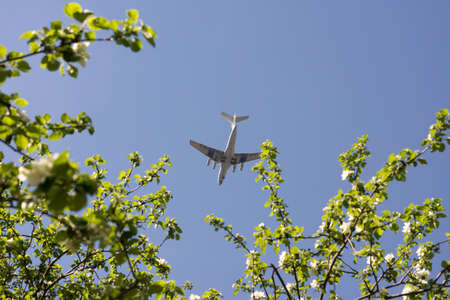 undercarriage: Flying high in the sky over the flowering trees plane