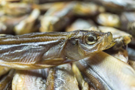 The head of a little dried fish compared to other, close up. Stock Photo
