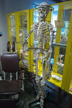Zelenogradsk, Kaliningrad region, Russia - Oct 18, 2017: Human skeleton with metal orthopedic devices in the Museum of Skulls and Skeletons Editorial