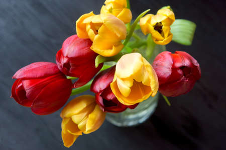 Red and yellow tulips in a vase on a wooden table Stock Photo