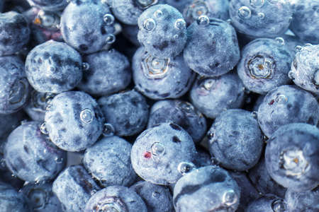 Fresh blueberries in water, texture Stock Photo
