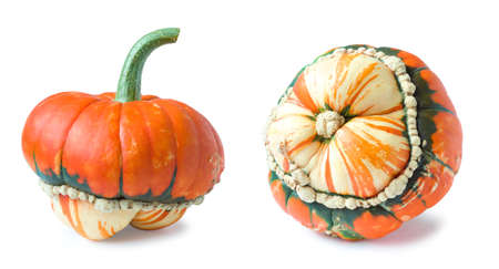 Orange-green decorative pumpkin isolated on a white background. Autumn harvest season. Foto de archivo