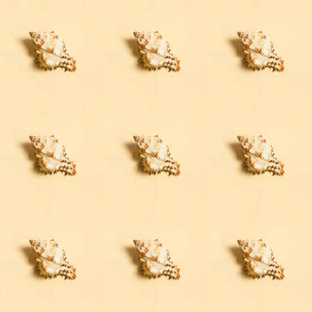 Sea shells on a beige background. A symbol of summer season relaxation - sandy beach. Seamless pattern Stockfoto