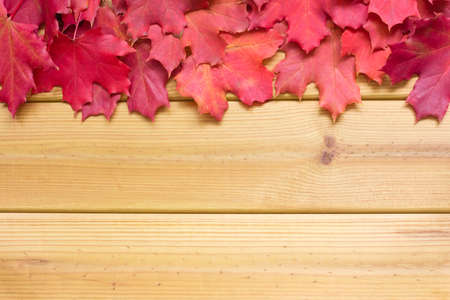 Frame of red maple leaves on a wooden background. Bright autumn backdrop with copy space Stockfoto