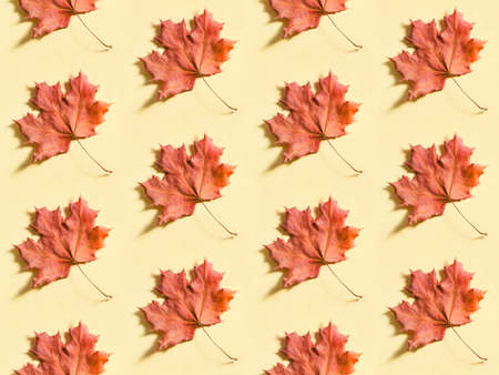 Seamless background with the red maple leaves on beige paper. Autumn foliage pattern Stockfoto