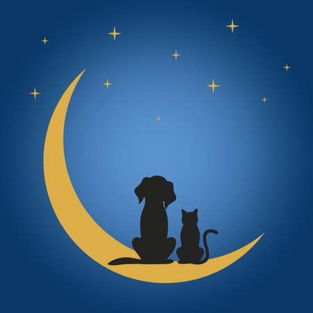 a dog and a cat sit on the moon under the stars at night Illustration