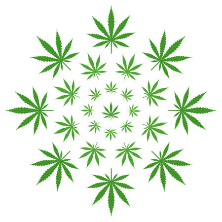 illustration of green cannabis leaves in a circle on a white background
