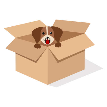 illustration of a cute puppy in a box on a white background with shadow