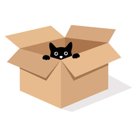 illustration of a black cat in a box on a white background with shadow Vectores