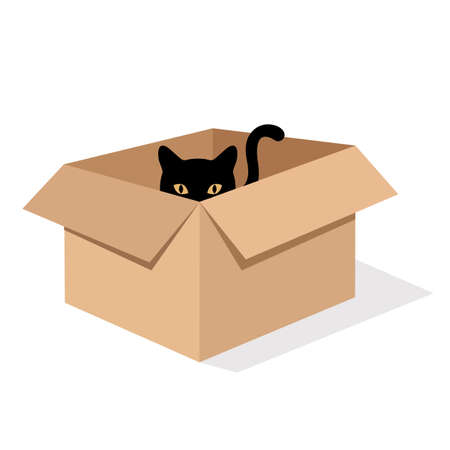 illustration of a cute black cat in a box on a white background with shadow