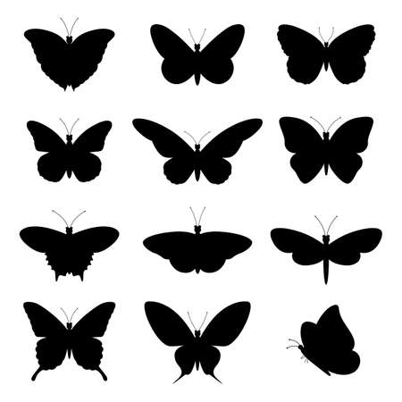 illustration of silhouettes of black diverse butterflies on a white background
