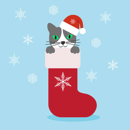 Cute cartoon cat in red Christmas stocking on a blue background with snowflakes.