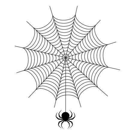 illustration of a spider web with a spider on a white background