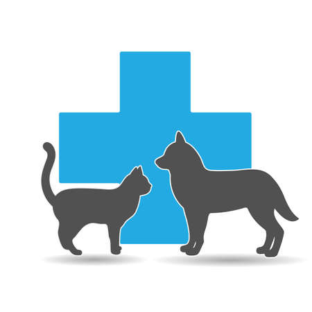 veterinary clinic  illustration with pets on medical cross background