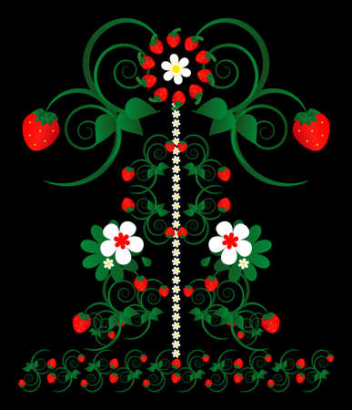 fruit stalk: strawberry with flowers decorative ornament on black background Illustration