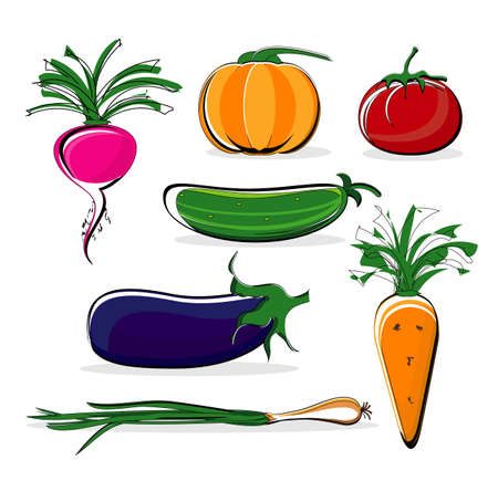 vegetable colored on white background Vector