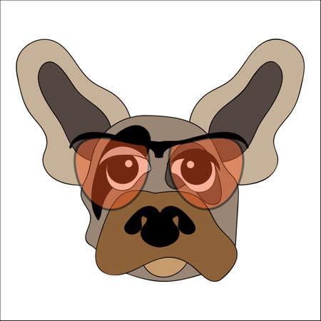 Dog in glasses. Illustration