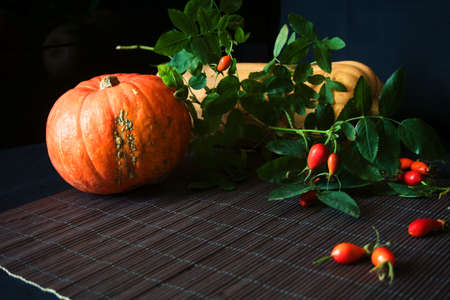Autumn background with pumpkin and dogrose on a black background.