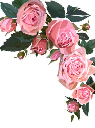 Floral design illustration garden flower pink rose isolated on white background. Elegant bouquet print in rustic style. Wedding invitation card template.