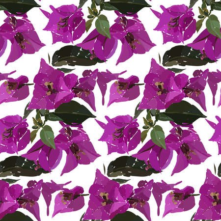 Pink bougainvillea seamless pattern. Botanical illustration hand drawn. Vector floral design for fashion prints, scrapbook, wrapping paper.