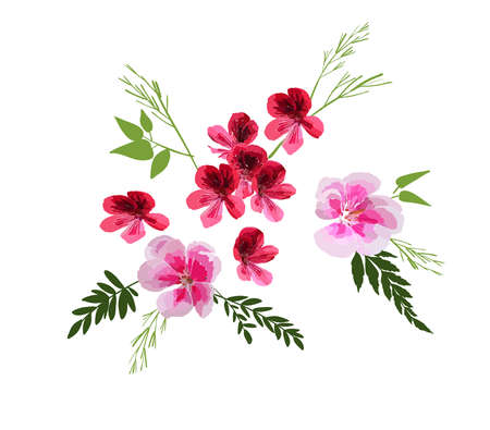 Set of Floral Greeting card with different garden flowers, botanical natural Illustration isolated on white backgroundn hand drawn style.